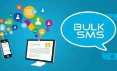 Where Will You Apply Bulk SMS Provider Service